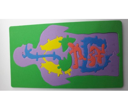 human digestive system jig saw puzzle